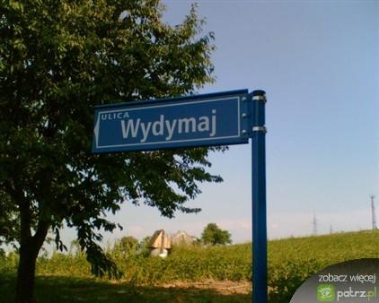 funny Polish street